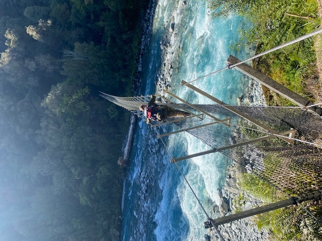 Braving the Cable bridge